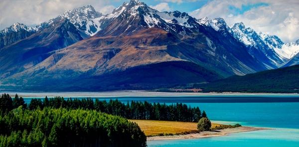 Новая Зеландия – новая жизнь на зеленом континенте